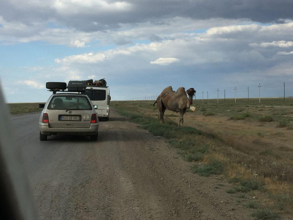 Kasachstan Steppe
